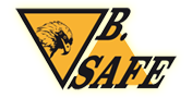 B.Safe Security – Israel